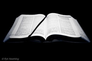 """""""Open Bible"""" by Ryk Neethling (2011), shared under a Creative Commons Attribution License"""